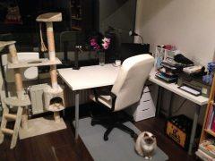 Kamer bureau - Amanda's Update